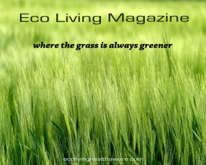 Eco Living Health Aware Magazine